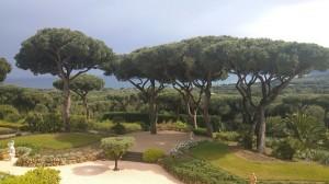 messardiere-jardin